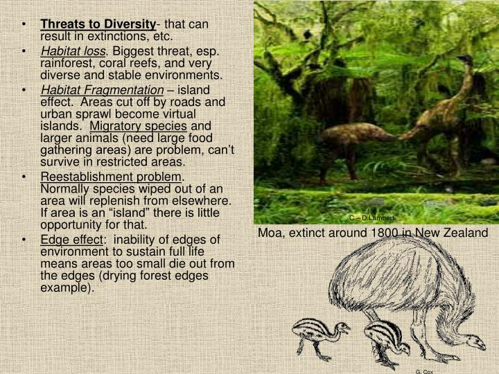 Threats to Diversity