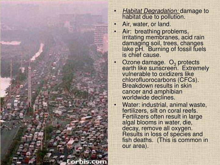 Habitat Degradation:
