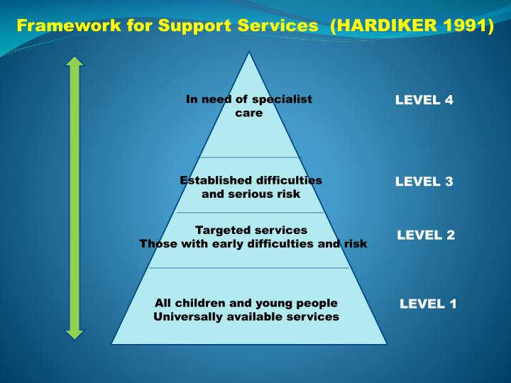 Framework for Support Services  (HARDIKER 1991)
