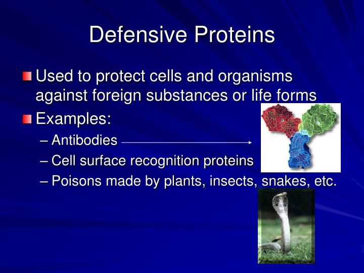 Defensive Proteins