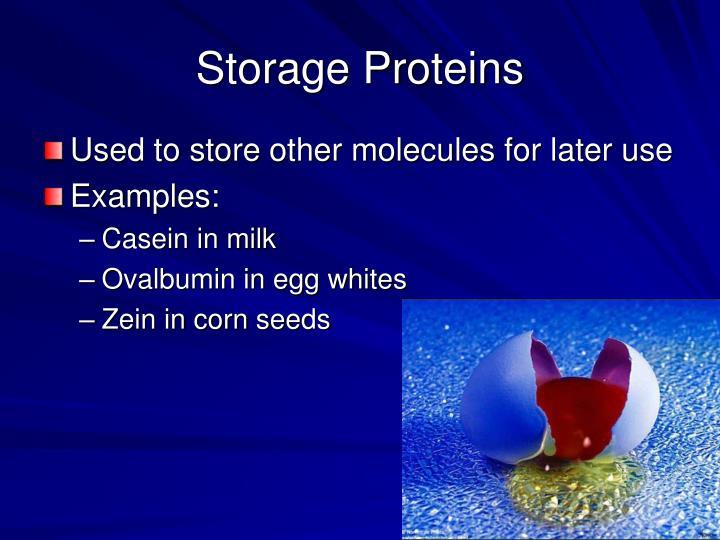Storage Proteins