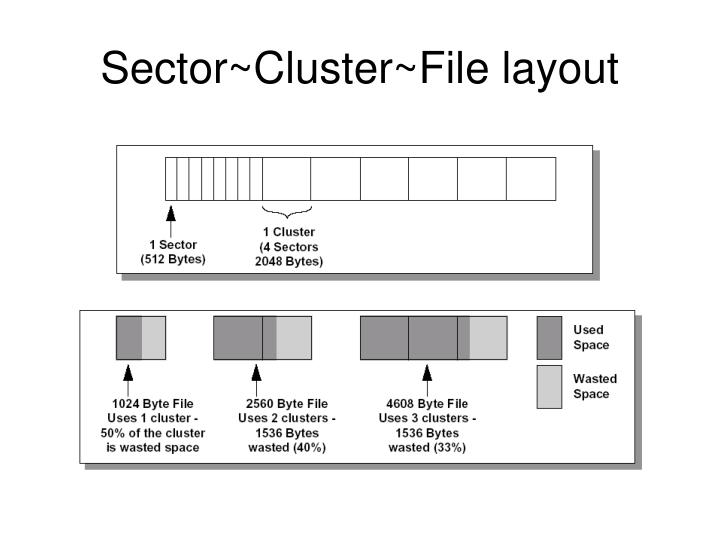 Sector~Cluster~File layout