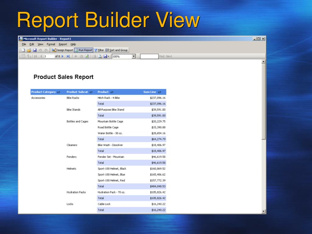 Report Builder View