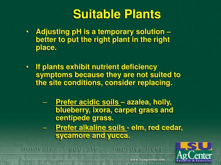 Suitable Plants