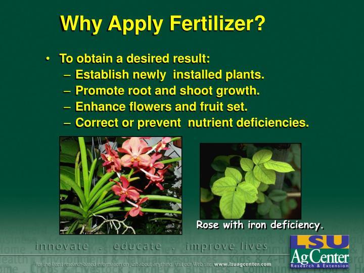 Why Apply Fertilizer?