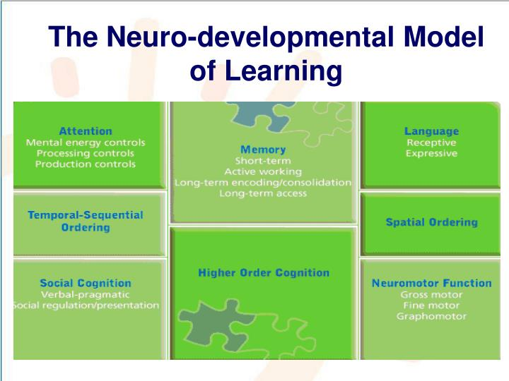 The Neuro-developmental Model of Learning
