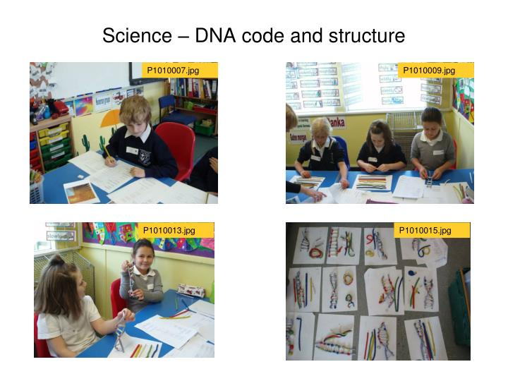 Science dna code and structure