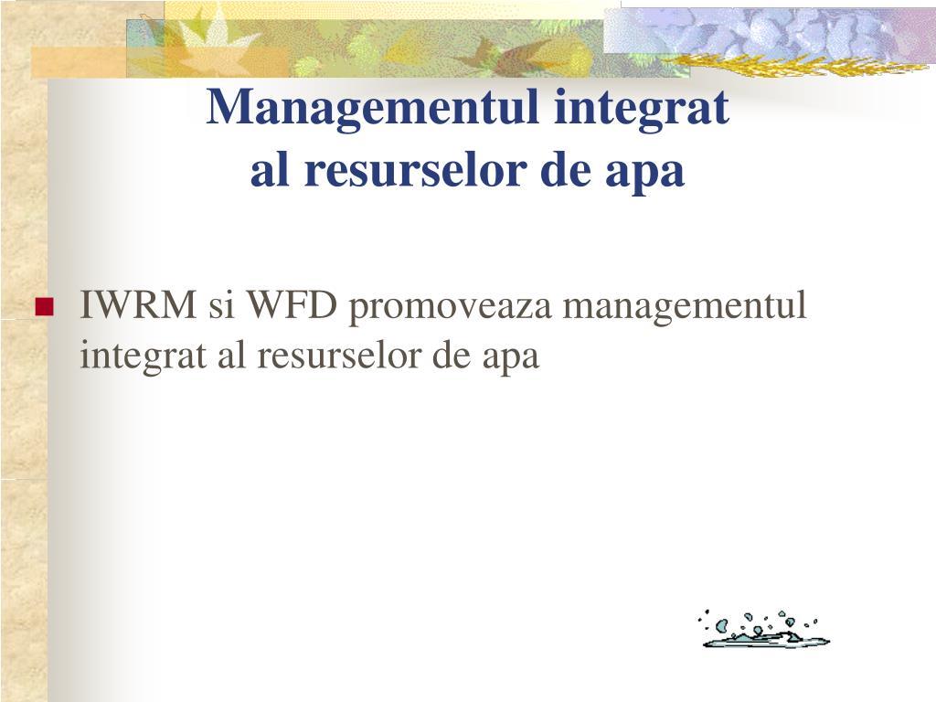 Managementul integrat