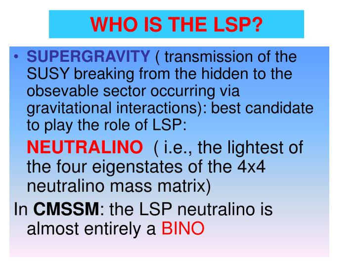 WHO IS THE LSP?
