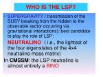 who is the lsp