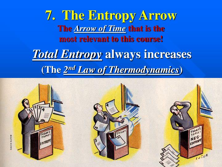 7.  The Entropy Arrow