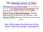 the entropy arrow of time