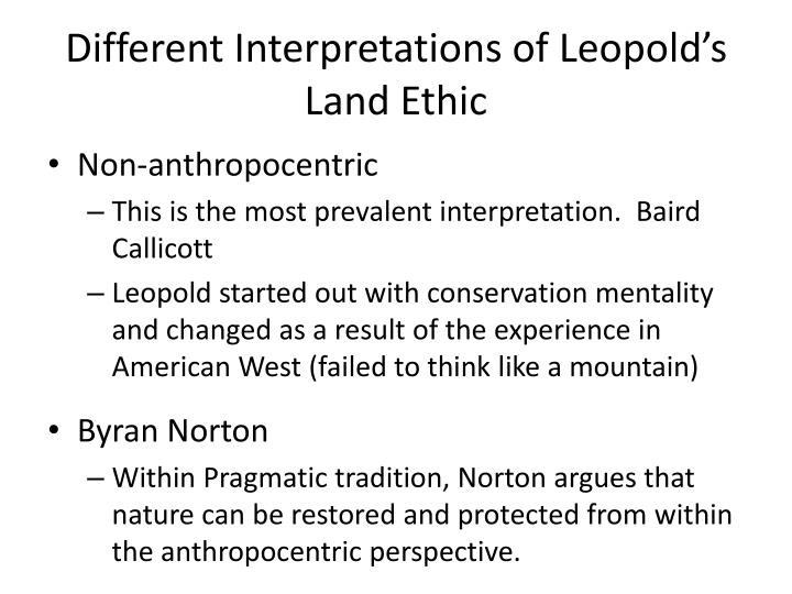 Different Interpretations of Leopold's Land Ethic