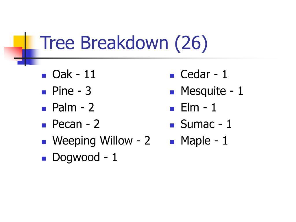 Oak - 11