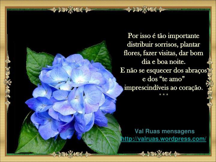 Por isso é tão importante distribuir sorrisos, plantar flores, fazer visitas, dar bom dia e boa noite.