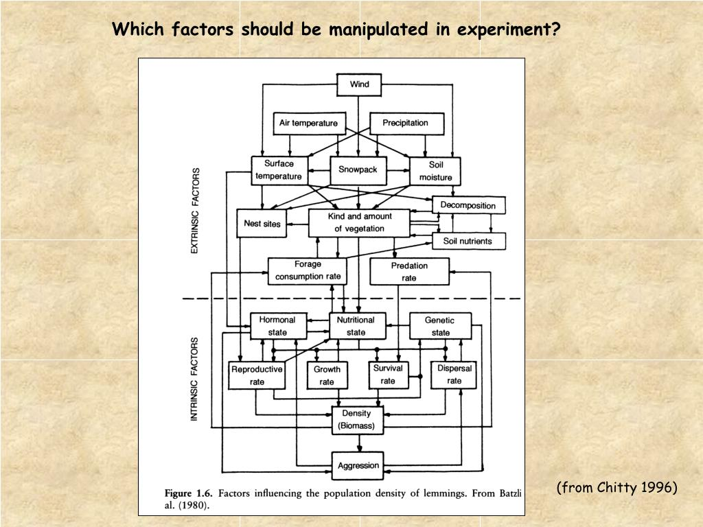 Which factors should be manipulated in experiment?