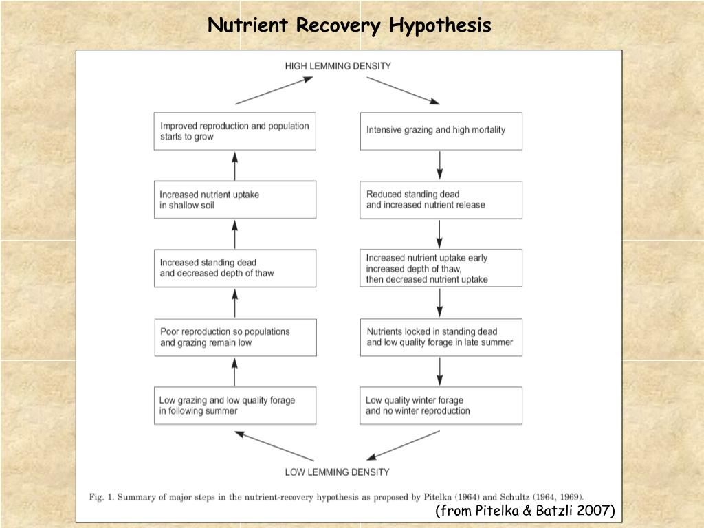 Nutrient Recovery Hypothesis