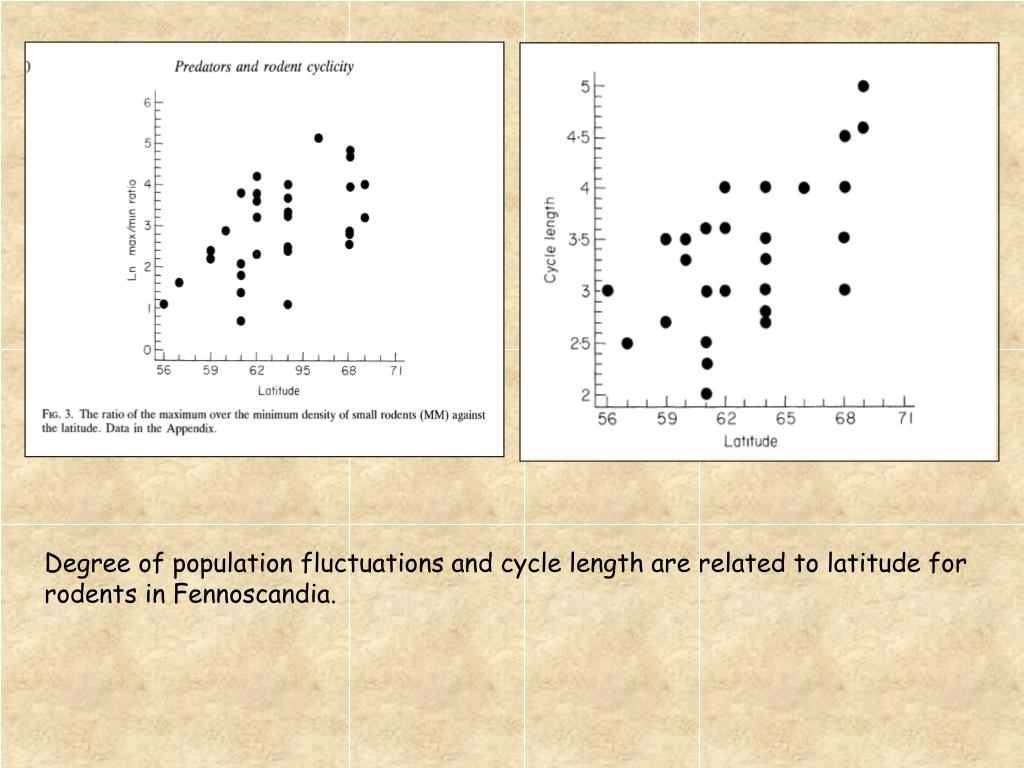 Degree of population fluctuations and cycle length are related to latitude for rodents in Fennoscandia.