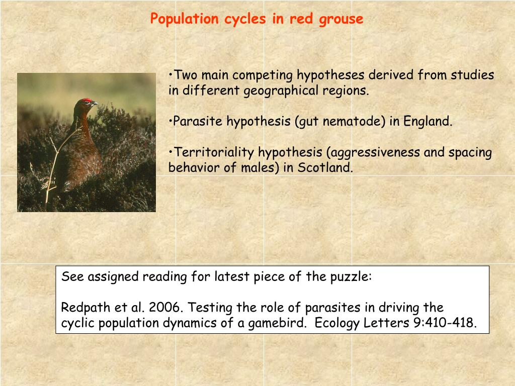 Population cycles in red grouse