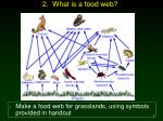 2 what is a food web