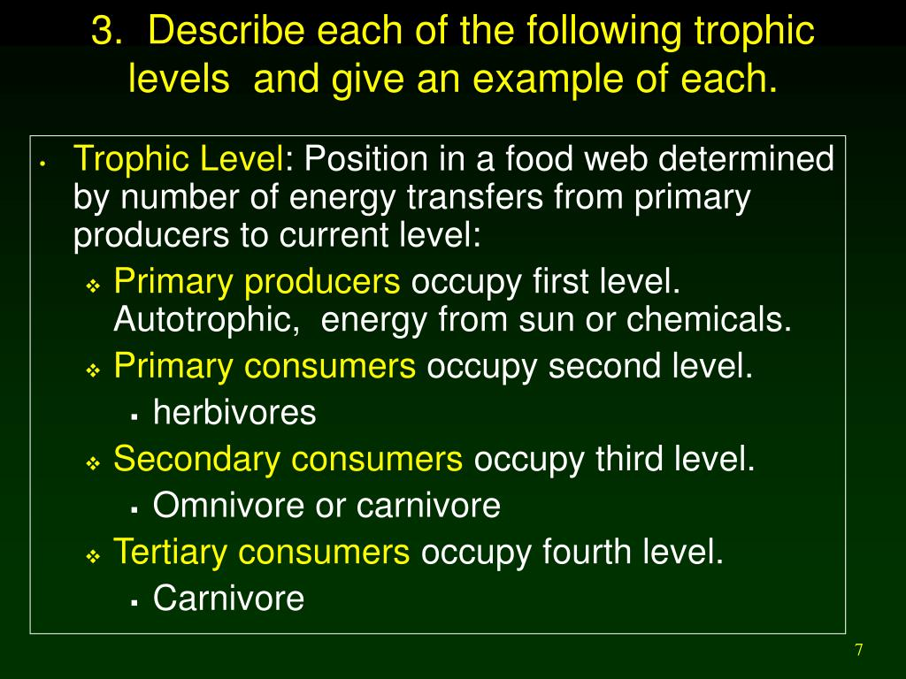3.  Describe each of the following trophic levels  and give an example of each.