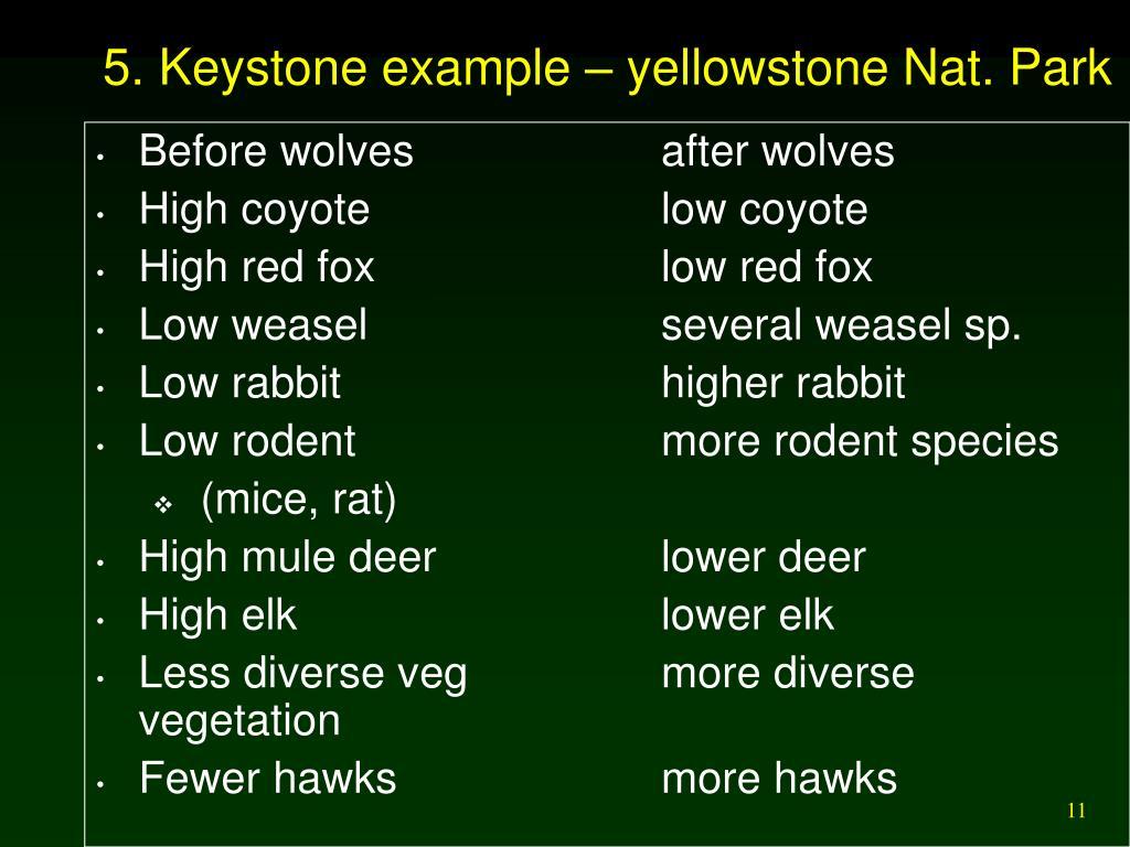 5. Keystone example – yellowstone Nat. Park