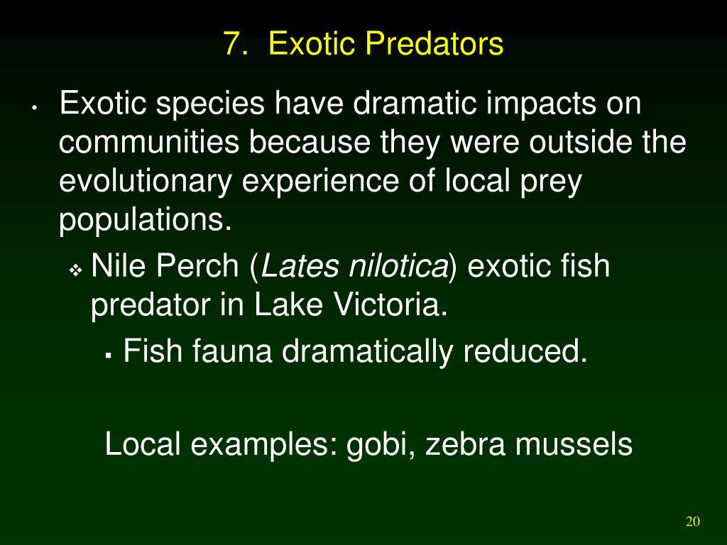 7.  Exotic Predators