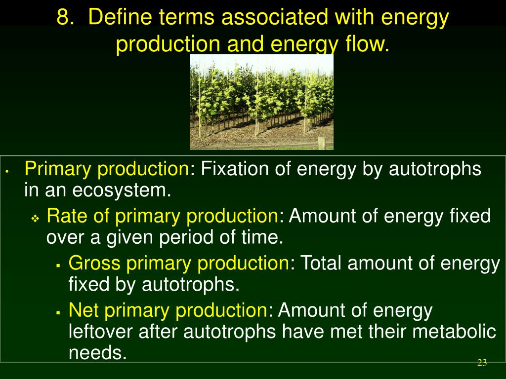 8.  Define terms associated with energy production and energy flow.