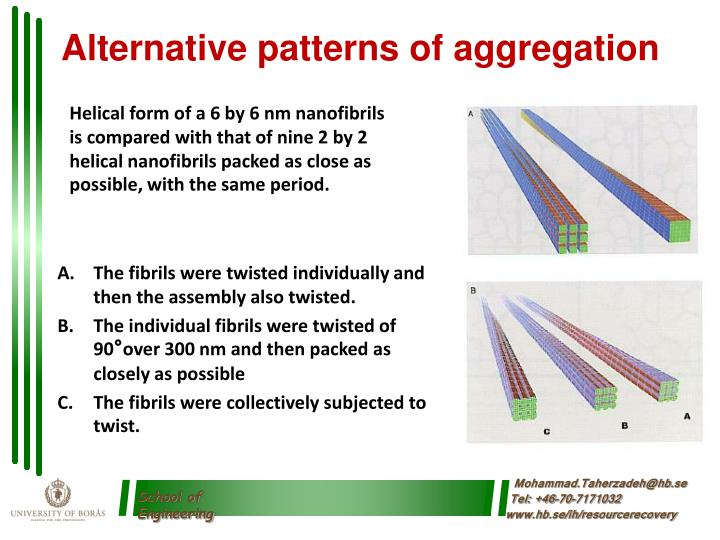 Alternative patterns of aggregation