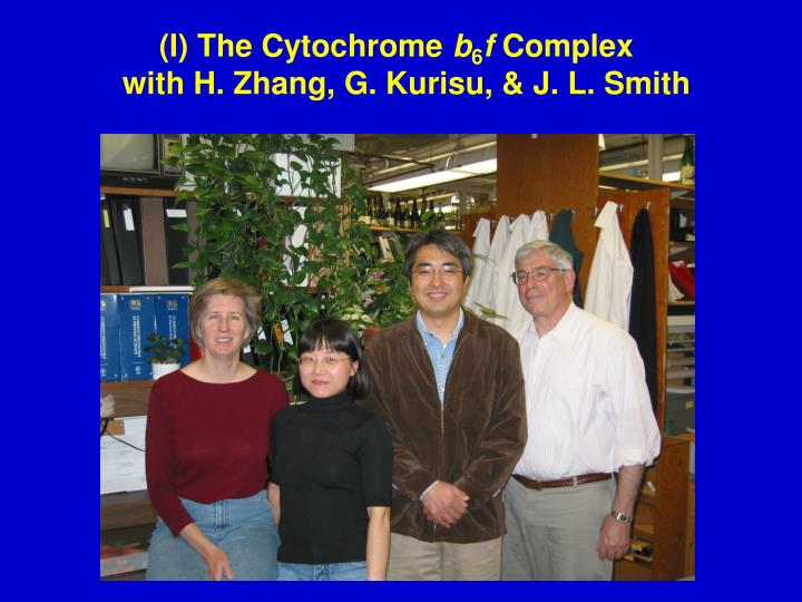 I the cytochrome b 6 f complex with h zhang g kurisu j l smith