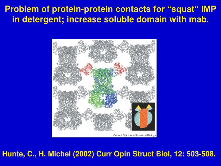 "Problem of protein-protein contacts for ""squat"" IMP in detergent; increase soluble domain with mab"