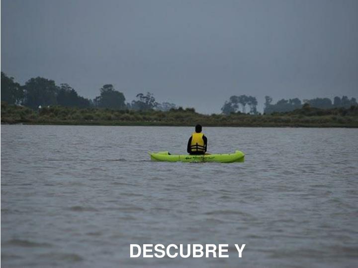 DESCUBRE Y