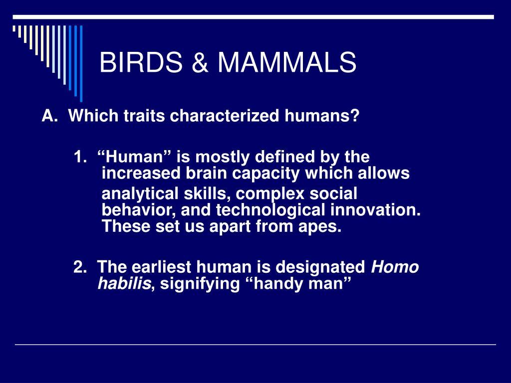 BIRDS & MAMMALS