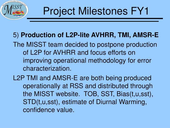 Project Milestones FY1