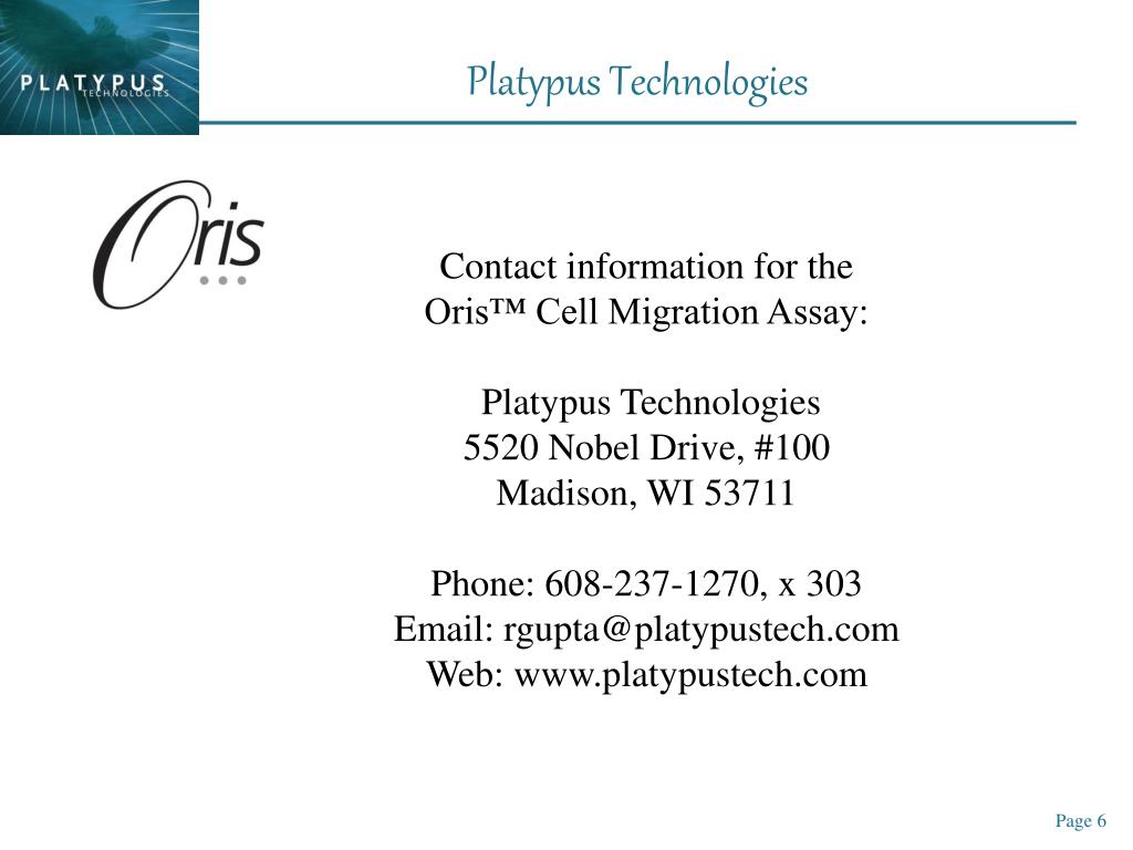 Contact information for the
