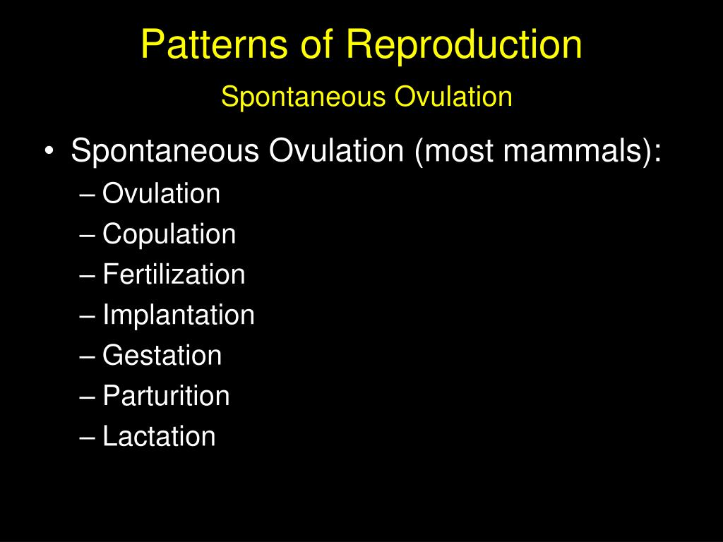 Patterns of Reproduction
