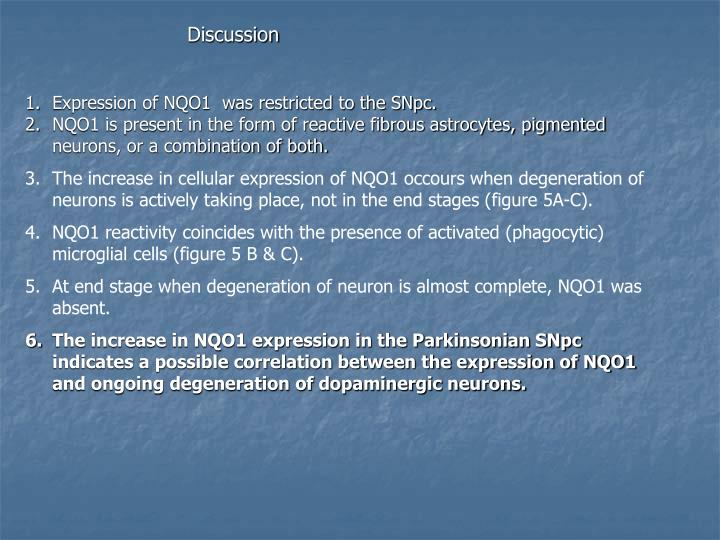 Expression of NQO1  was restricted to the SNpc.