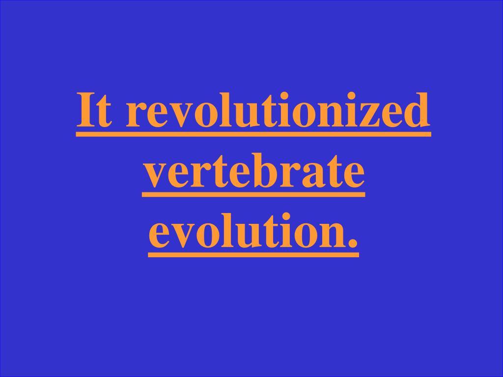 It revolutionized vertebrate evolution.
