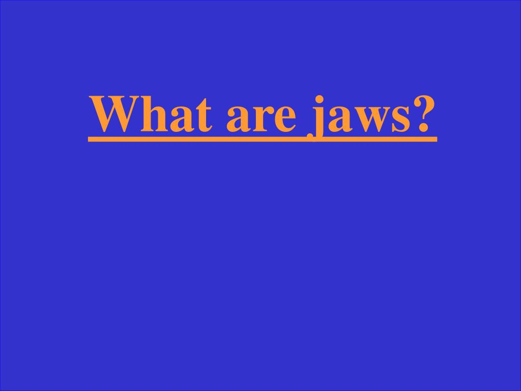 What are jaws?