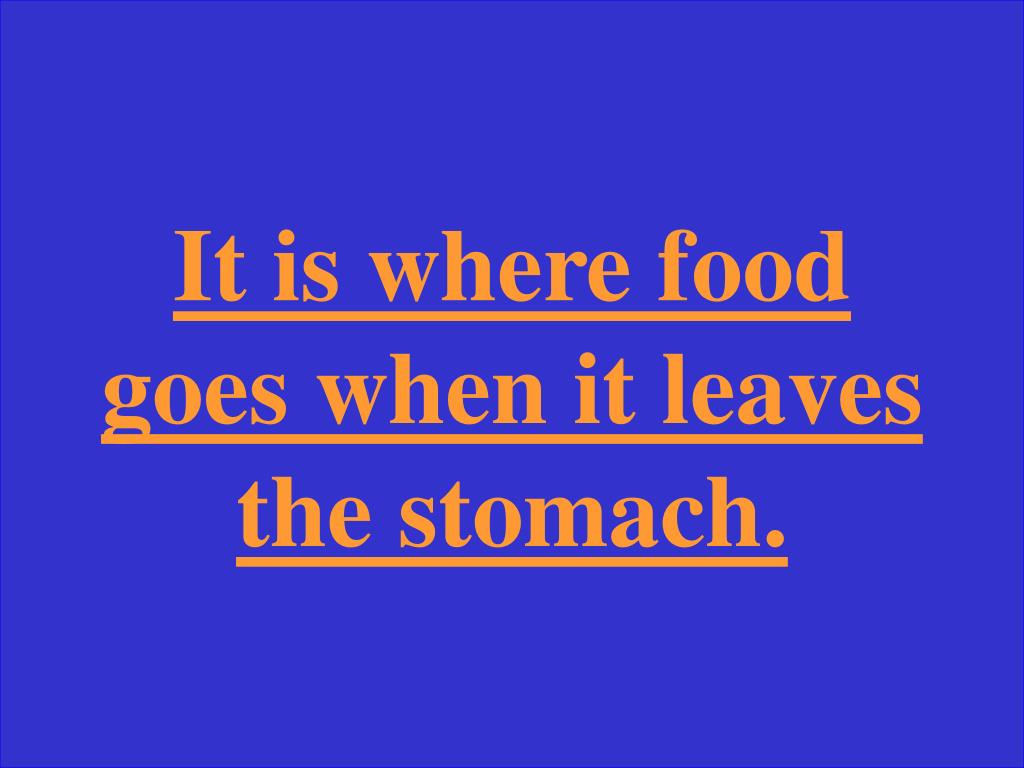 It is where food goes when it leaves the stomach.