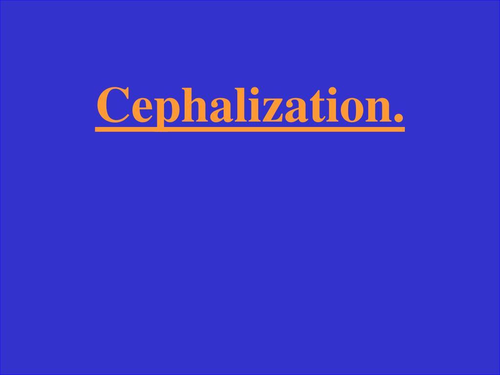 Cephalization.