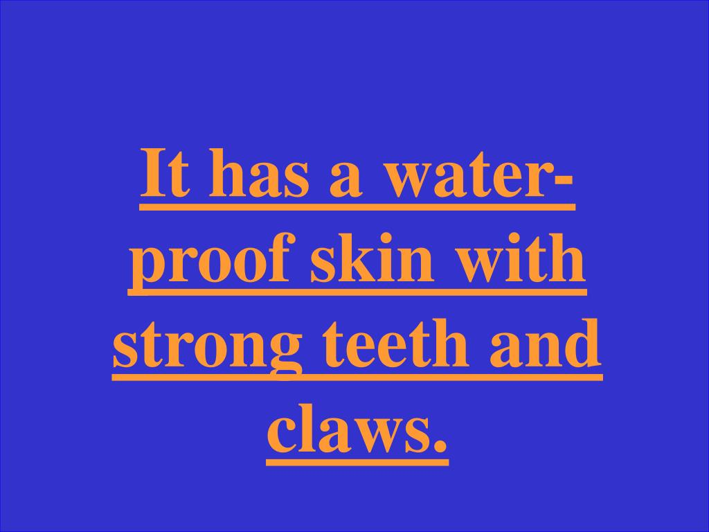 It has a water-proof skin with strong teeth and claws.