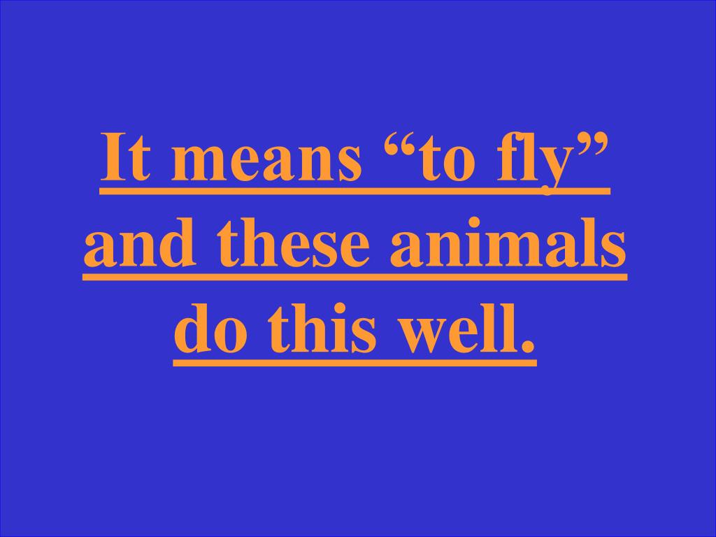 """It means """"to fly"""" and these animals do this well."""