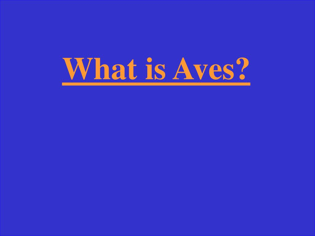 What is Aves?