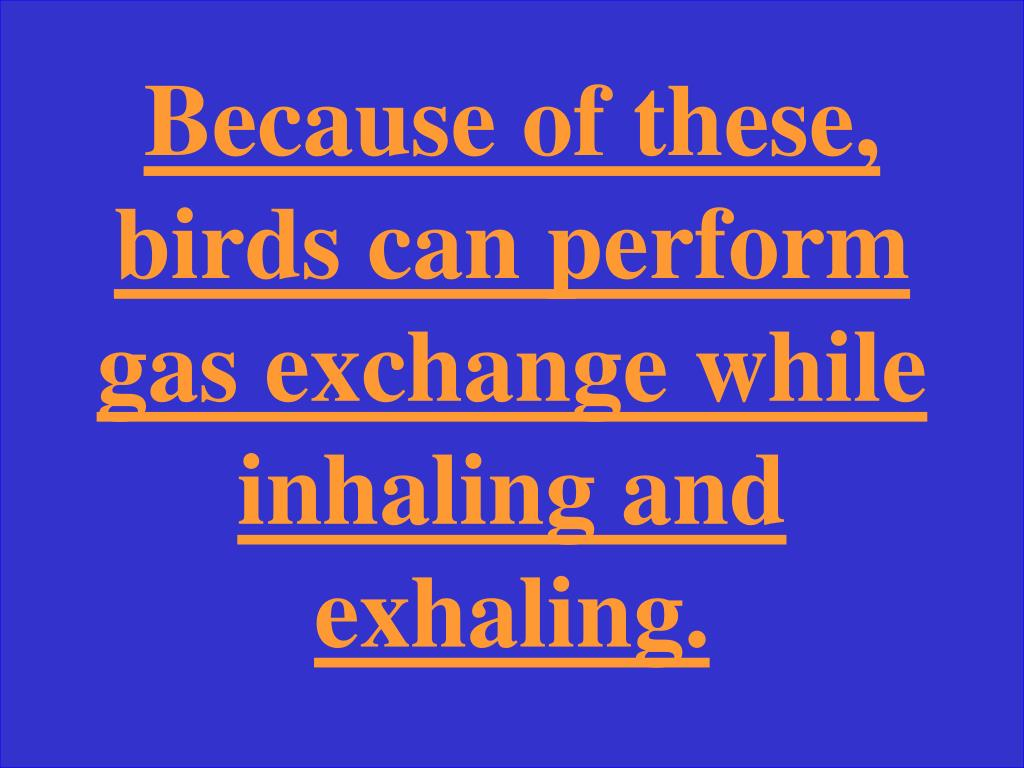 Because of these, birds can perform gas exchange while inhaling and exhaling.