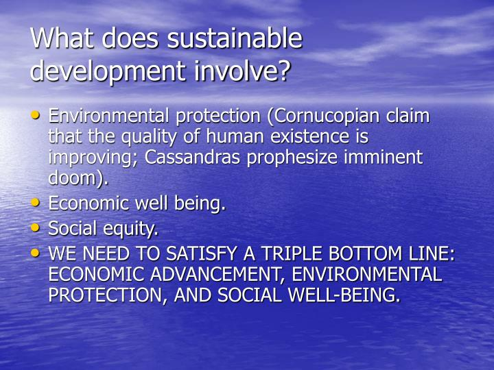 What does sustainable development involve?