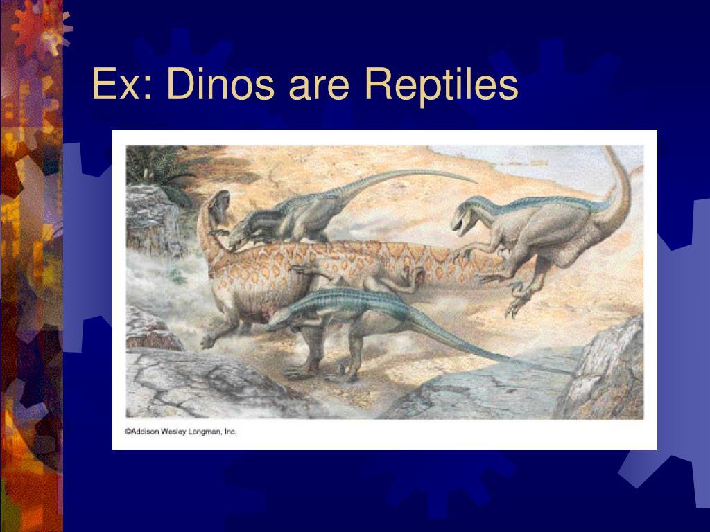 Ex: Dinos are Reptiles