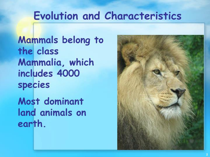 Evolution and characteristics