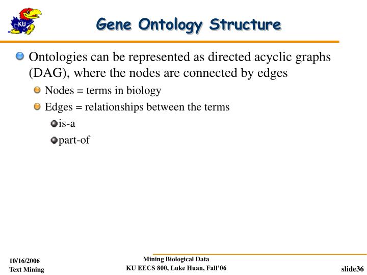 Gene Ontology Structure