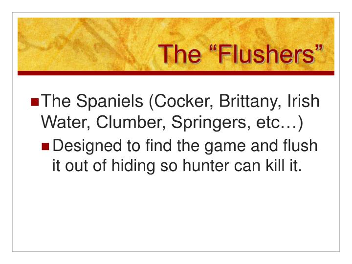 "The ""Flushers"""